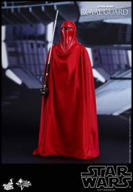 Star Wars: Episode VI Return of the Jedi - 1/6th scale Royal Guard