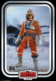 Star Wars - Luke Skywalker ( Snowspeeder  Pilot )