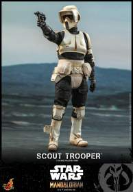 The Mandalorian :  Scout Trooper